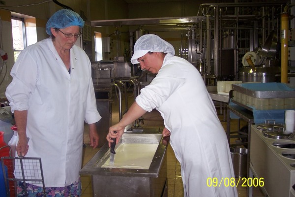 Jo cutting thecurd